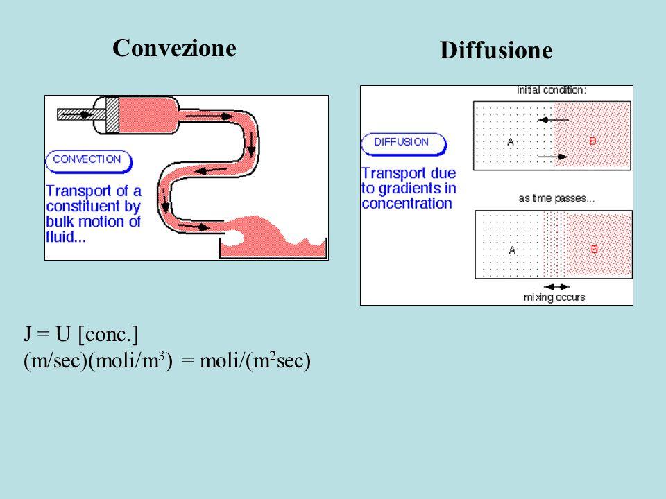 Convezione Diffusione J = U [conc.] (m/sec)(moli/m3) = moli/(m2sec)